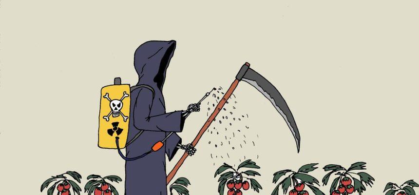Morte por agrotóxicos é grave problema de saúde pública, diz Fiocruz