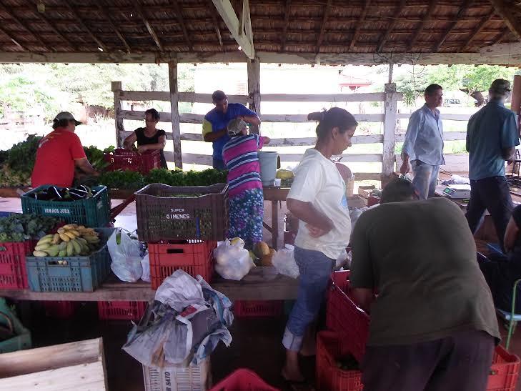 Venda de cestas agroflorestais estimula o cultivo em SAF's em Ribeirão Preto