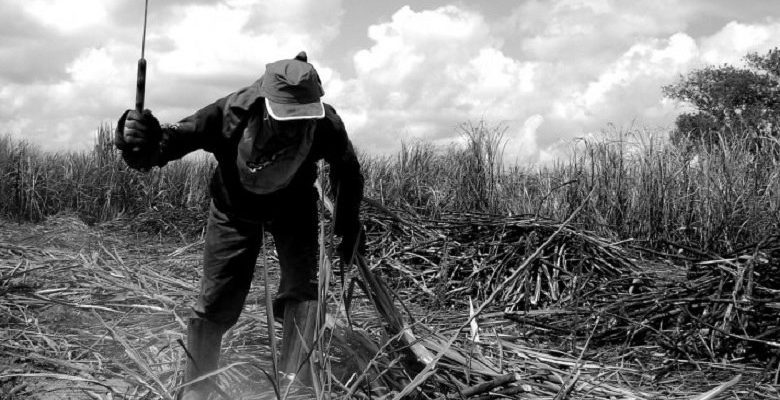 'É mentira que os rurais estão fora dessa reforma da Previdência'