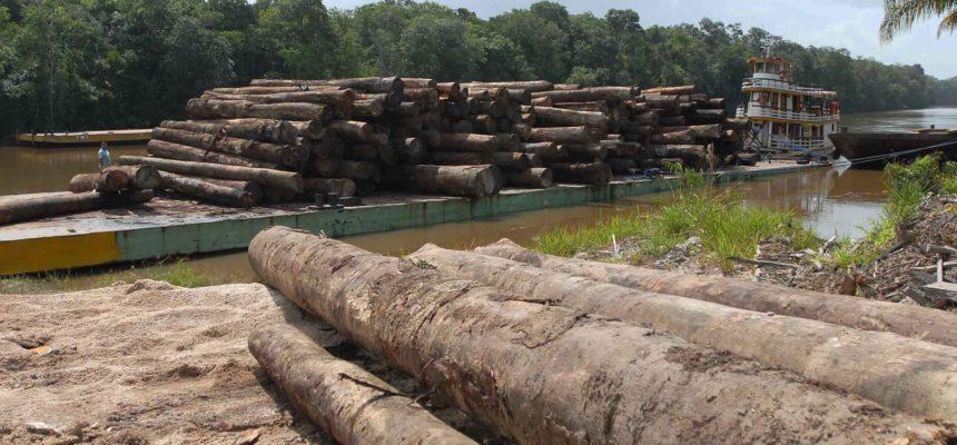 Desmatamento na Amazônia cresce quase 30% sob governos Temer e Bolsonaro