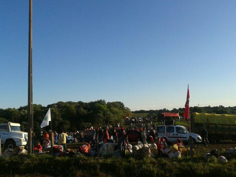 MST e MAB ocupam fazenda grilada em Lagoa Vermelha no RS