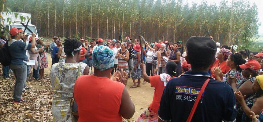 """Mulheres Sem Terra ocupam """"falso projeto sustentável"""" de mineradora na Bahia"""