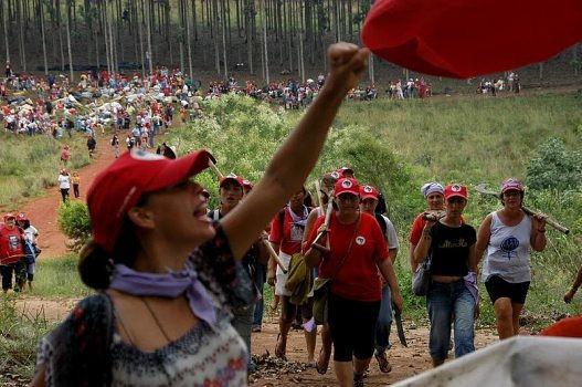 No Paraná, mulheres do MST ocupam mais um pedaço da área grilada pela Araupel