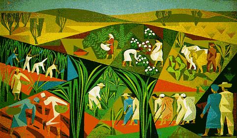 Sem Terra debatem coleta de sementes e a produção de mudas para reflorestamento