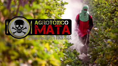 Agrotoxico-campanha-pela-vida.png