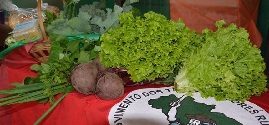 Movimentos apresentam plano emergencial para produção de alimentos em Alagoas