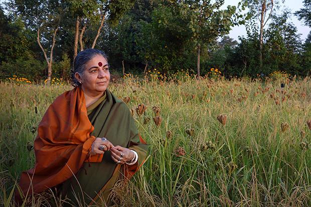 """Vandana Shiva: Vivemos uma """"ordem de guerra contra a Terra""""."""