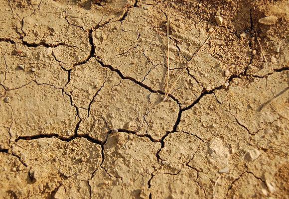 Conferência sobre as Secas na África alerta para os impactos do clima no continente