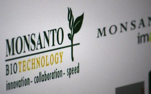 Monsanto se intromete na produção de orgânicos; movimentos criticam violações