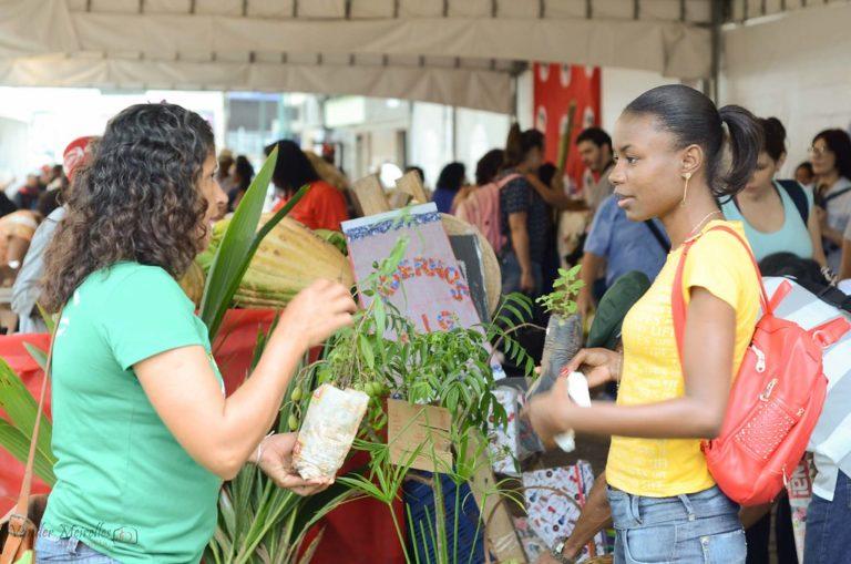 Mais de 15 toneladas de alimentos são vendidos na 1ª Feira Capixaba de Produtos da Reforma Agrária