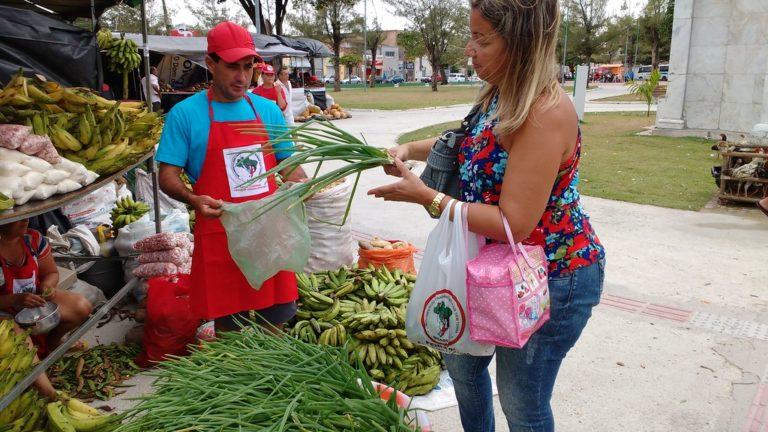 MST inicia 17ª Feira da Reforma Agrária em Alagoas
