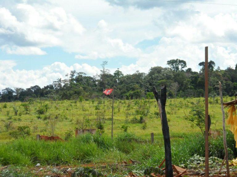 Acampamento do MST sofre despejo ilegal por pistoleiros em Rondônia
