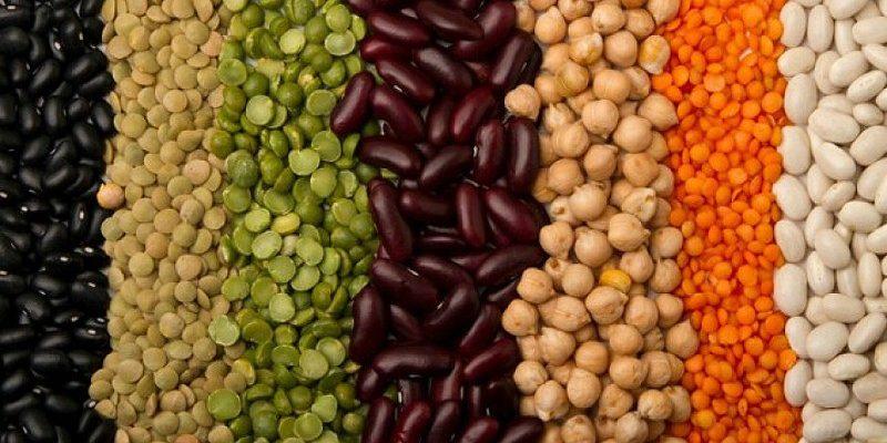 Modelo agrícola alternativo corre o risco de ser controlado pelas multinacionais