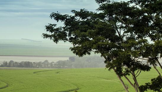 Fundo americano de professores passa a controlar 270 mil hectares no Brasil