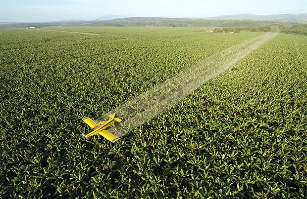 Intoxicações por agrotóxico quadruplicam no Sudeste