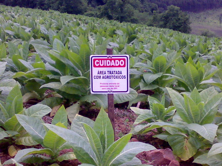 Região Sul consome 23% dos agrotóxicos do país