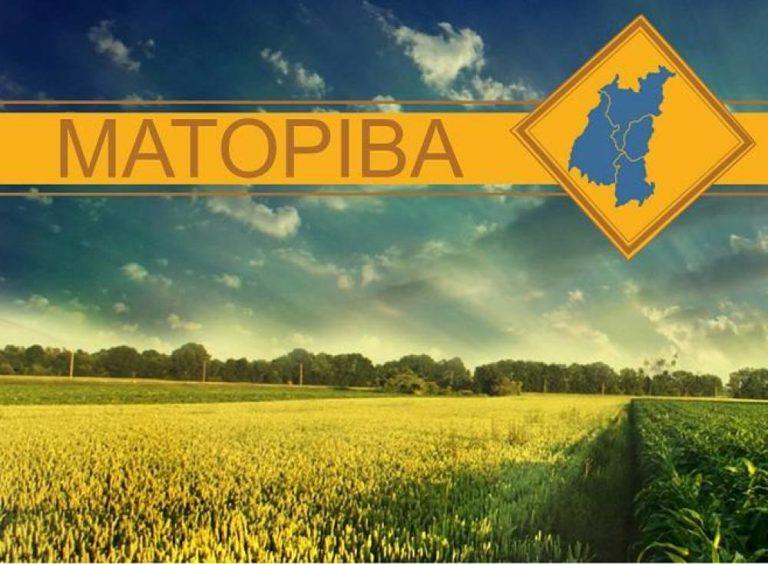 Matopiba é tema de audiência pública no Senado