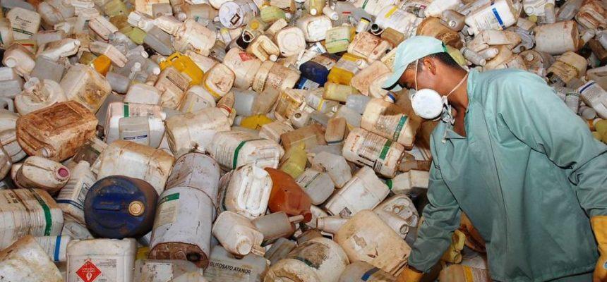 Pará triplica consumo de agrotóxicos; na Amazônia, soja avança para Roraima