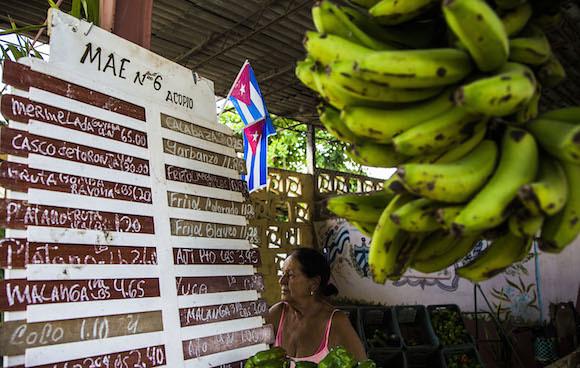 """Entrevista: """"Modelo agroecológico cubano poderia salvar o mundo"""""""