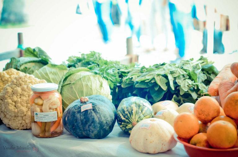 1º Circuito de feiras e mostras culturais do DF e Entorno oferta variedade de alimentos agroecológicos