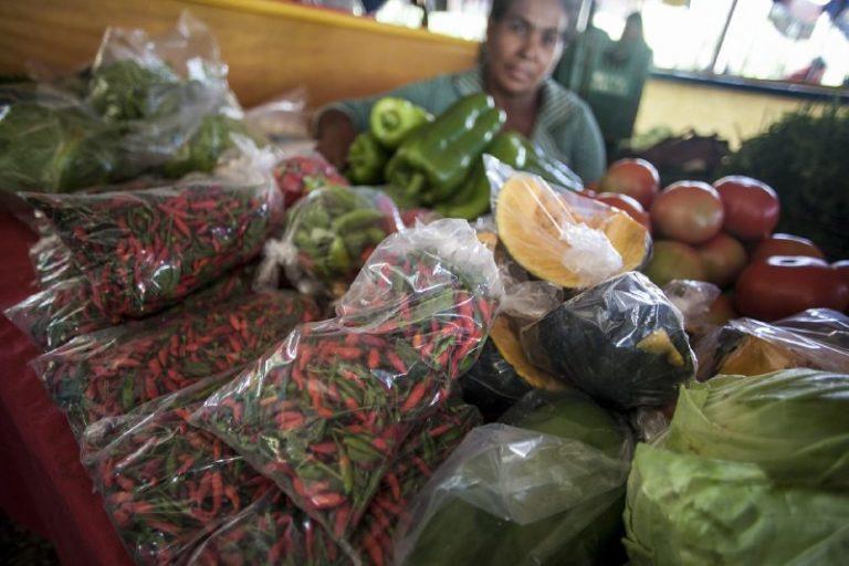 Circuito de Feira da Reforma Agrária comercializa mais de 12 toneladas de alimentos no DF