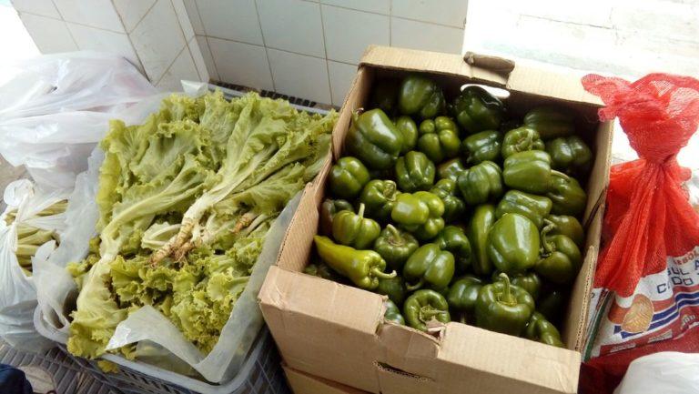 Sem Terra fazem doação de alimentos no sudoeste baiano