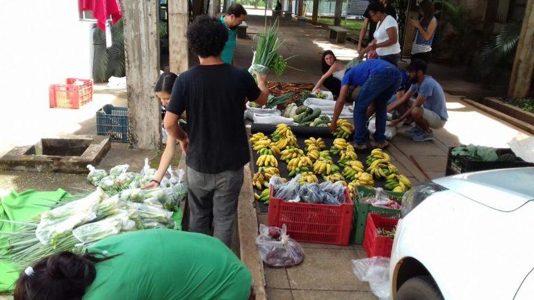 MST realiza entrega cestas agroecológicas em SP