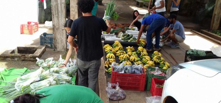 Em parceria com a UNESP, MST realiza entrega cestas agroecológicas em SP