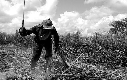 Justiça mantém obrigação da União divulgar Lista Suja do trabalho escravo