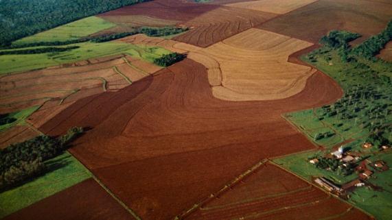 IBGE: as mudanças na cobertura e uso da terra no Brasil