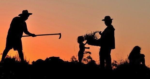 Artigo: O Golpe e a Reforma Agrária em 2016