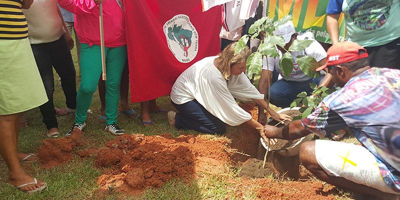 Acampamento Alexandra Kollontai realiza ação de reflorestamento