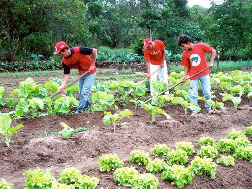 Agroecologia é tema de oficina no norte da Bahia