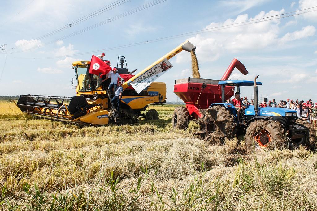Evento celebrou a abertura oficial da colheita de arroz orgânico no estado. Foto - Leandro Molina.jpg