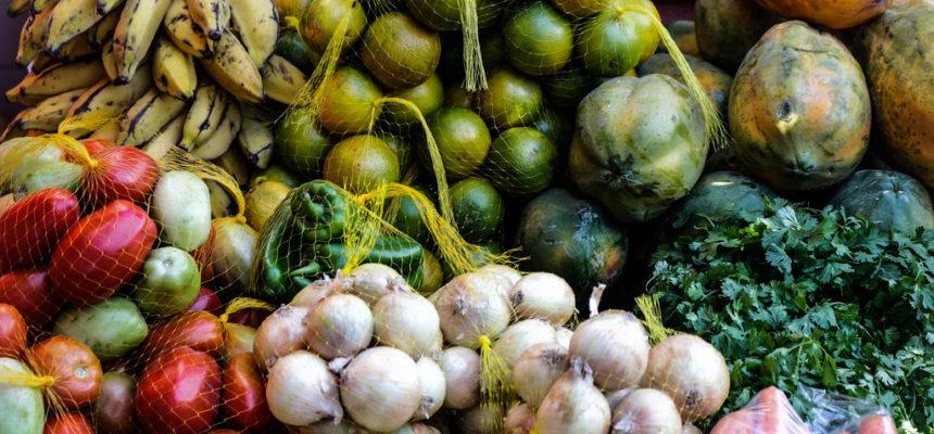Camponeses produzem mais de 70% dos alimentos, diz estudo