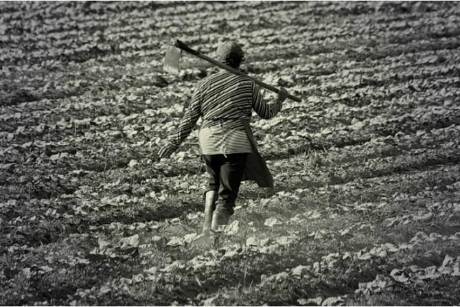Nova Previdência transforma trabalhador rural em objeto descartável