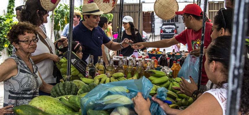 MST realiza VII Feira Cultural da Reforma Agrária no Ceará
