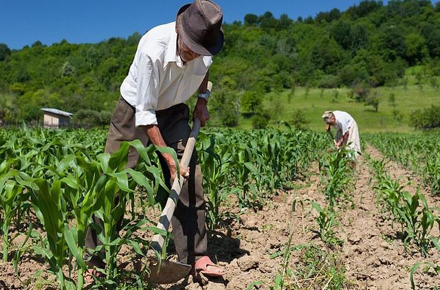 Mudança na Previdência rural fragiliza sindicatos e dificulta acesso à aposentadoria