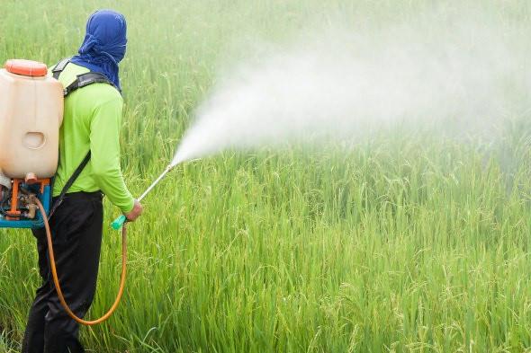 Câmara analisa PL que propõe redução progressiva de agrotóxicos