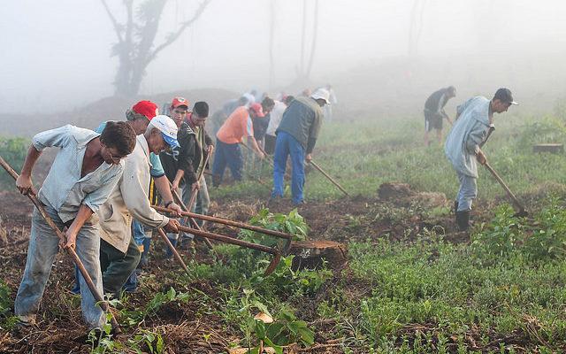 Massacre de agricultores Sem Terra no Paraná completa um ano