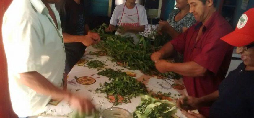 Acampados e assentados do Rio Grande do Sul realizam curso de saberes populares e saúde coletiva