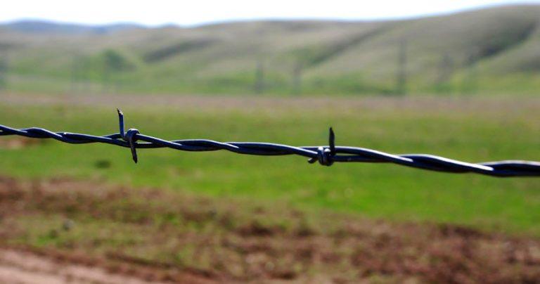 MP 759: o que é e como altera a Reforma Agrária