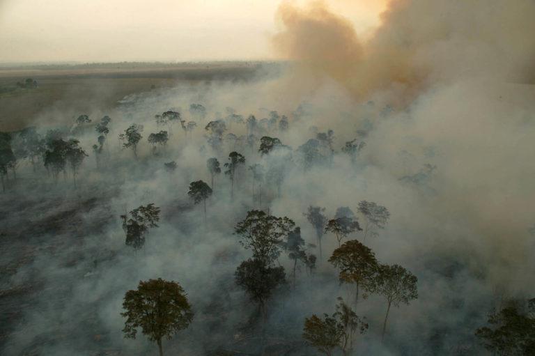 Ruralistas e Temer fazem o loteamento da Amazônia