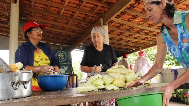 assentamento produz doces e mel para a 2º Feira Nacional da Reforma Agrária