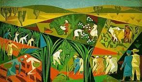 """""""Não há contradição entre desenvolvimento e agroecologia"""""""