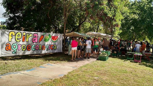 Projeto de Lei Ordinária ameaça feiras agroecológicas em Pernambuco