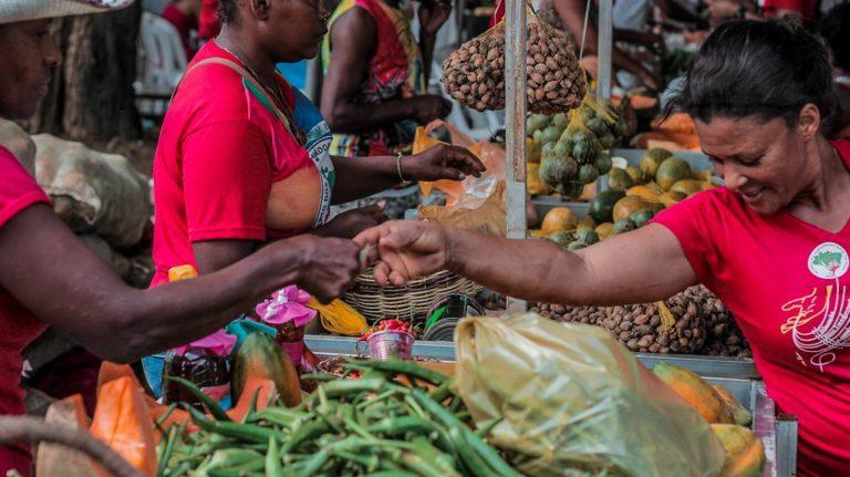 MST ocupa a Piedade com alimentos saudáveis na 3º Feira da Reforma Agrária