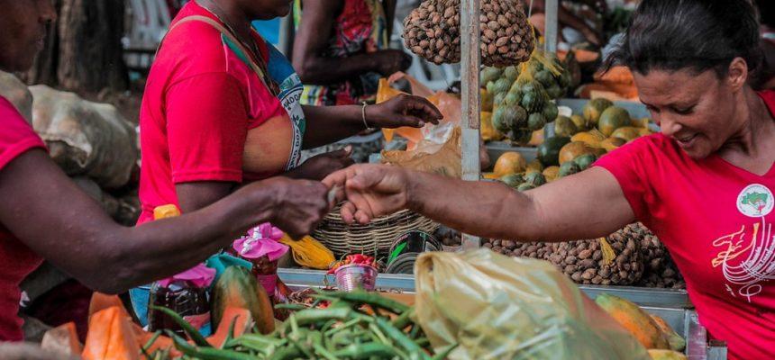 Em Salvador, MST ocupa a Piedade com alimentos saudáveis na 3º Feira da Reforma Agrária