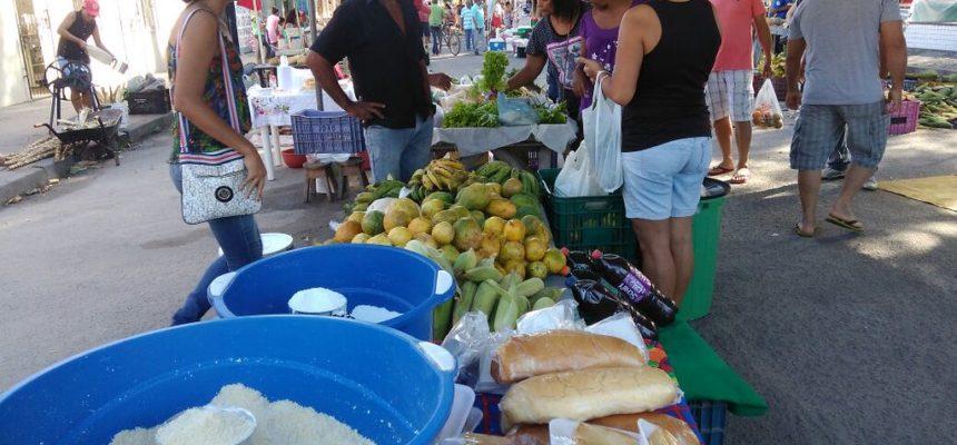 MST realiza a 5º Feira da Reforma Agrária no centro de Eunápolis