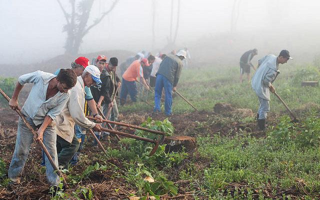 Governo Temer paralisa reforma agrária no Paraná